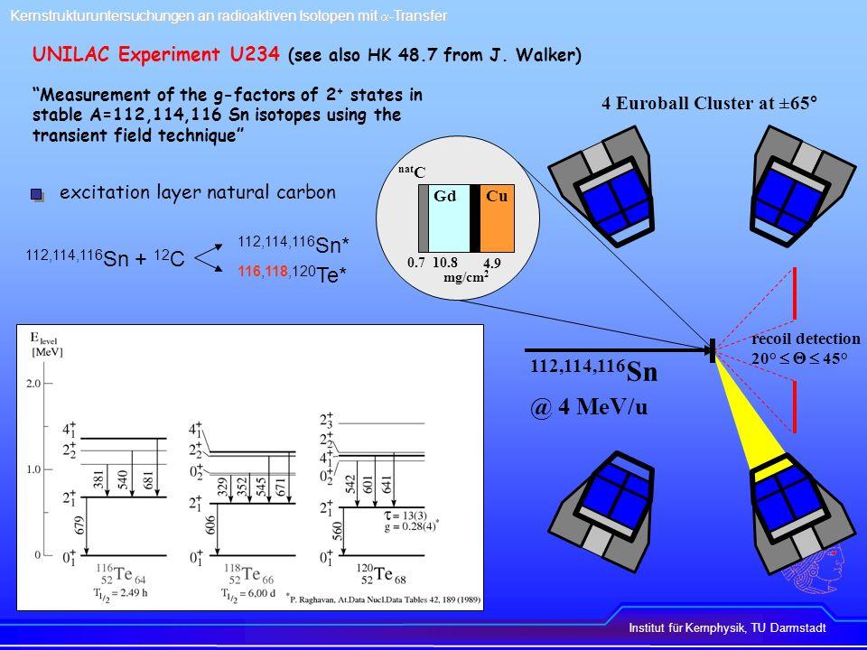 Kernstrukturuntersuchungen an radioaktiven Isotopen mit a-Transfer