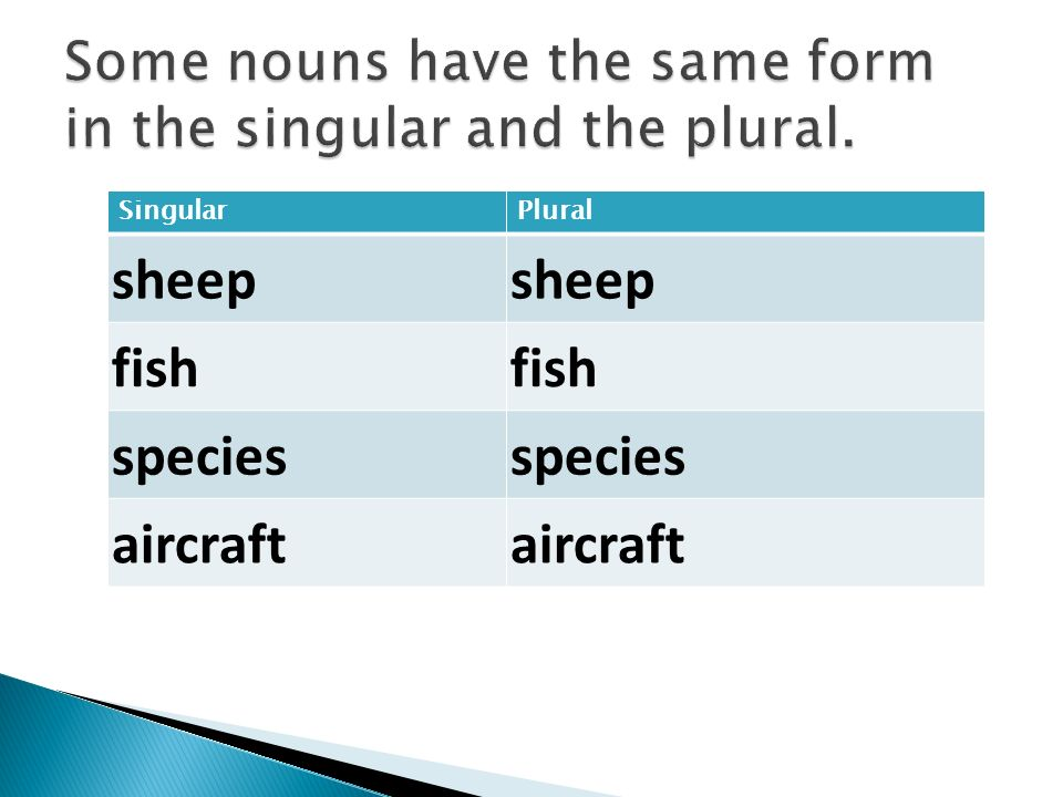 Sheep Singular Noun ?. - ppt video on...