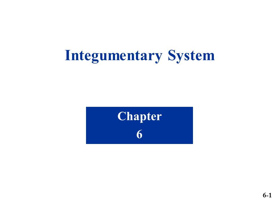 Integumentary System Chapter 6 6-1
