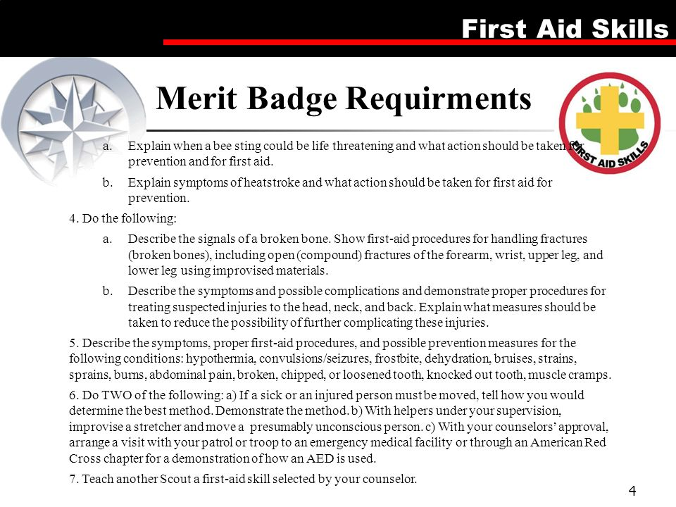 First Aid Merit Badge This is a 5 lesson plan which can be run ...