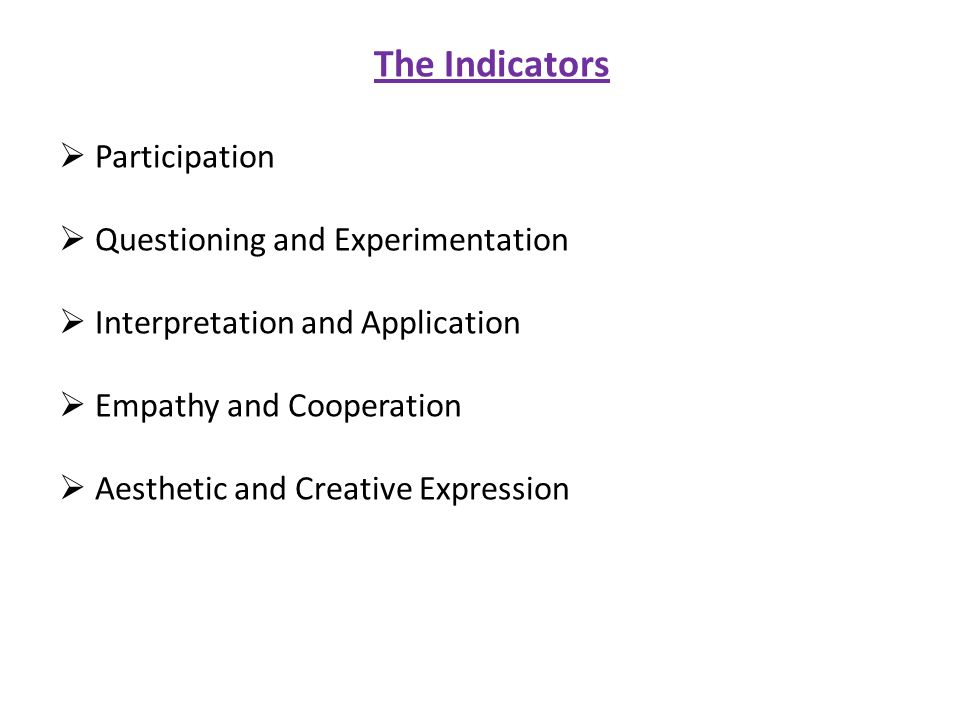 The Indicators Participation Questioning and Experimentation