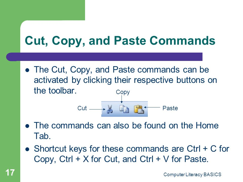 Computer literacy basics ppt download for In this house copy and paste