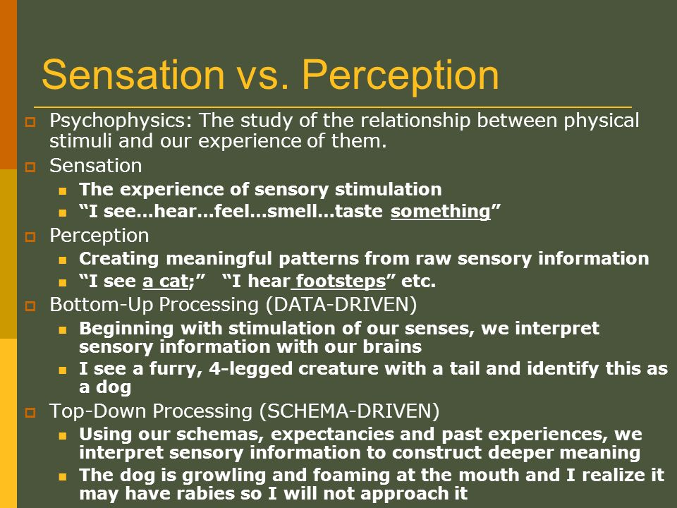 bugelski alampay Posts about psychology written  the main aim of this experiment however is to replicate the study of perception conducted by bugelski and alampay who.