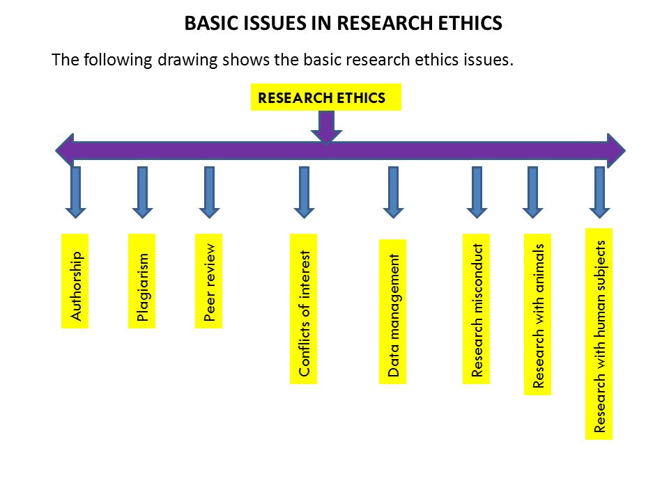 Main issues of feminism research in