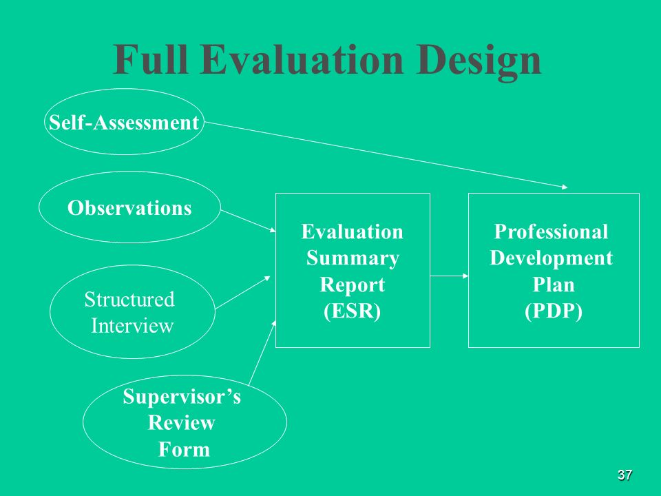 professional development evaluation process essay The supervision process:complications and concerns as the persons responsible for assisting supervisees in their professional development, supervisors must assist therapists in understanding the limitations or extent of their abilities.