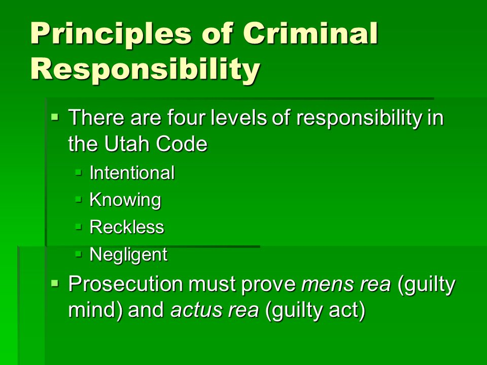 Principles of Criminal Responsibility
