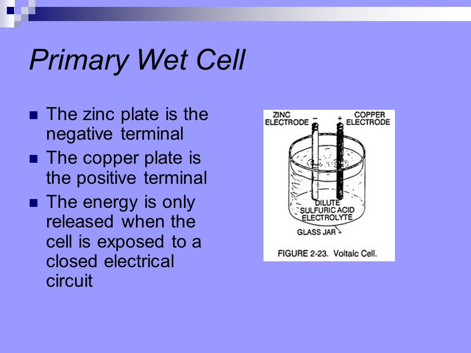 Primary Wet Cell The zinc plate is the negative terminal
