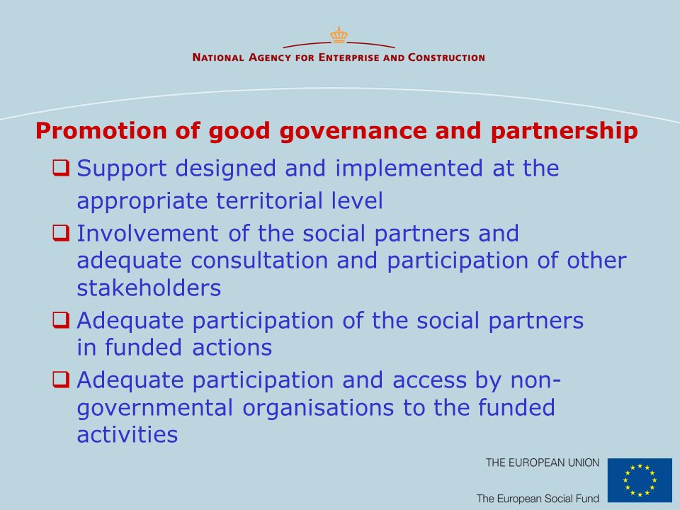 Promotion of good governance and partnership