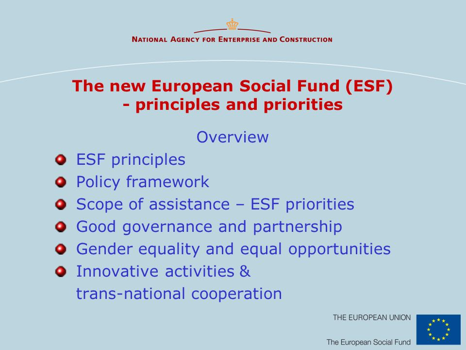 The new European Social Fund (ESF) - principles and priorities Overview