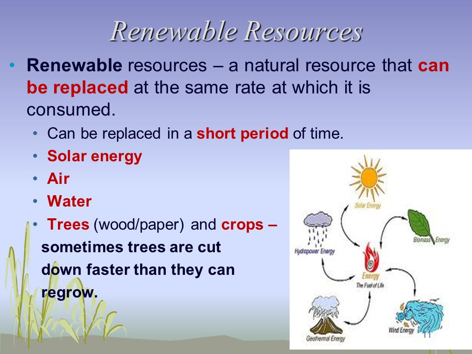 Is Natural Resources Renewable Or Nonrenewable