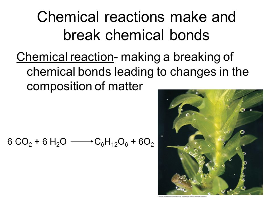 Chemical reactions make and break chemical bonds