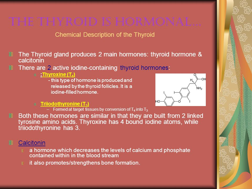 The Thyroid is hormonal…