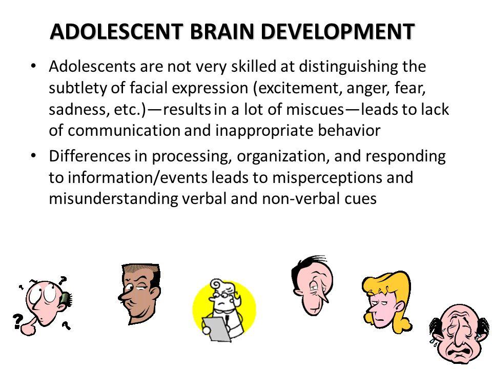 adolescence brain development