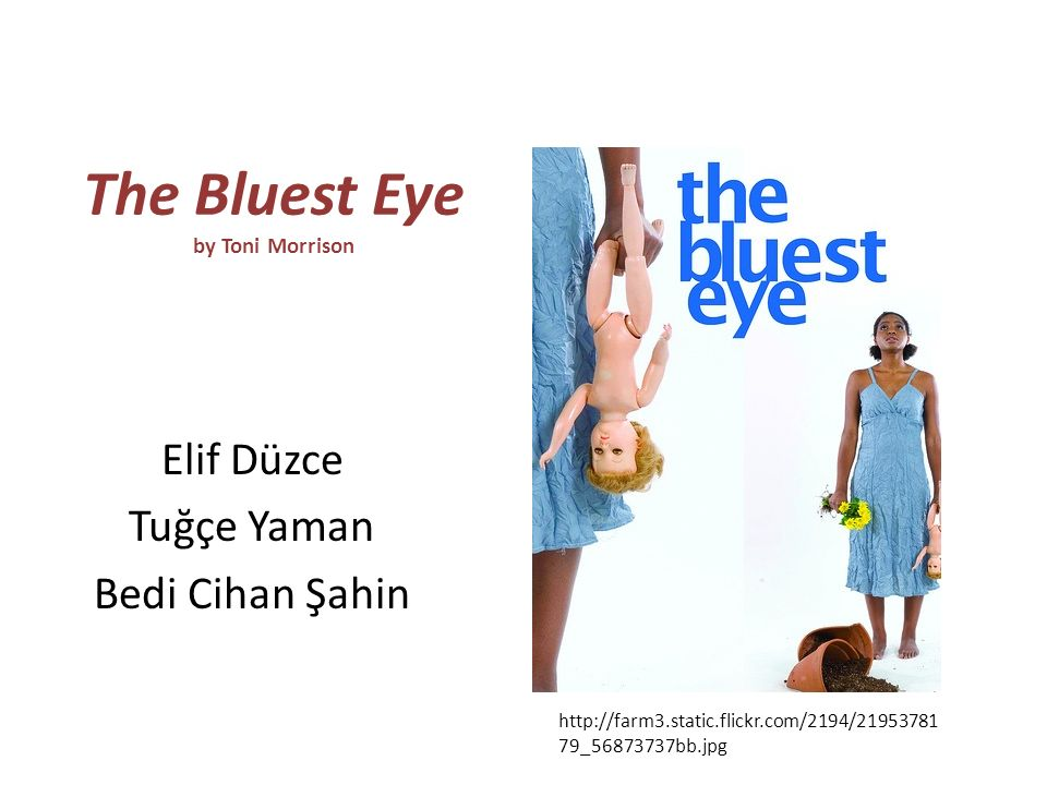 bluest eye thesis A summary of themes in toni morrison's the bluest eye learn exactly what happened in this chapter, scene, or section of the bluest eye and what it means perfect for acing essays, tests, and quizzes, as well as for writing lesson plans.