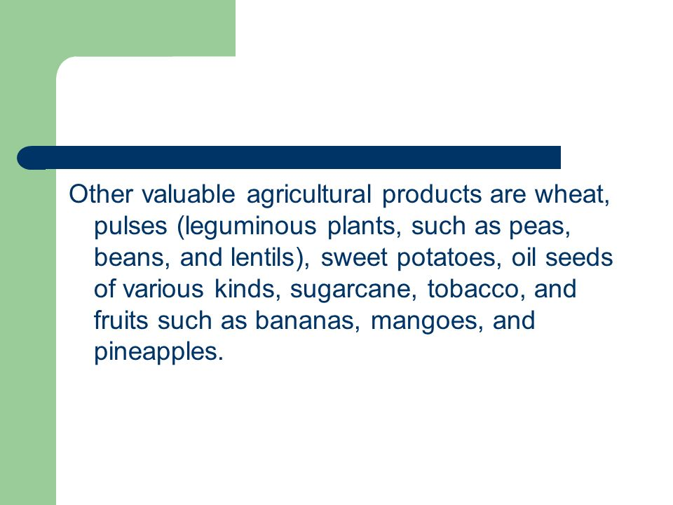 Other valuable agricultural products are wheat, pulses (leguminous plants, such as peas, beans, and lentils), sweet potatoes, oil seeds of various kinds, sugarcane, tobacco, and fruits such as bananas, mangoes, and pineapples.