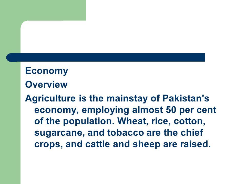 Economy Overview.