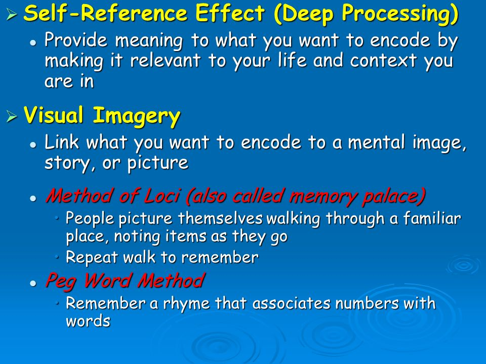 Self, Memory, and the Self-Reference Effect