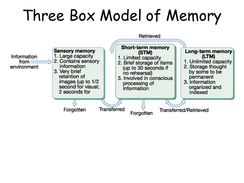week 3 memory essay Apply: hr ethics scenarios hrm 300 week 3 do you need help with your school visit wwwlindashelpcom to learn about the great services i offer for students like you i can write your papers, do your presentations, labs and final exams my work is 100% original, plagiarism free, edited, formatted, and ready for you to read more about apply: hr ethics scenarios hrm 300 week 3 lindashelp[.
