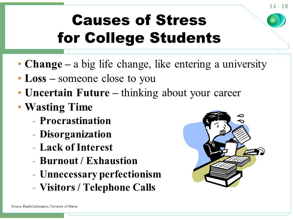 Cause Of Stress In College Student Essay