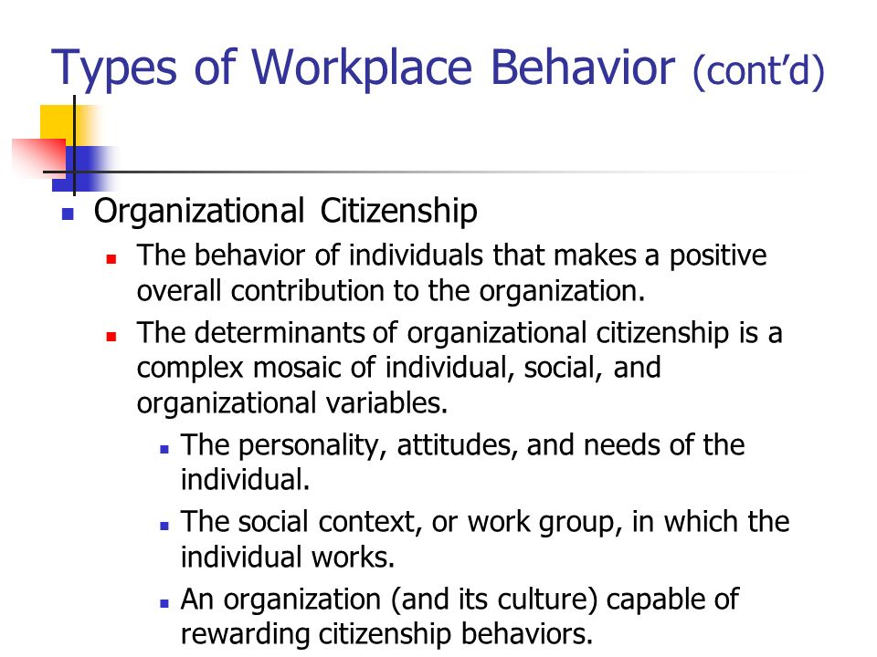 individual organization behavior Organisational behavior: individual behavior in an organization  chapter 1 individual behavior in an organization summary• human beings are unique and so are their behaviors• we need to study human behavior based on certain scientific theories and observations• behaviors and motivation are significant indicators of individual.