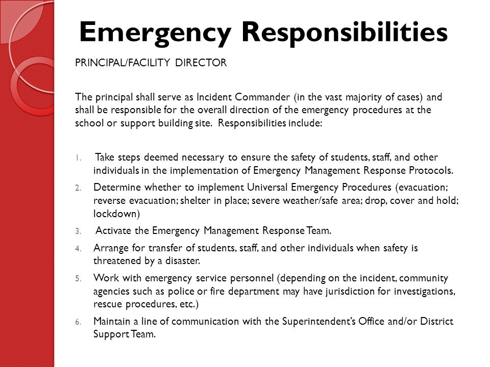 Role and responsibility of school safety