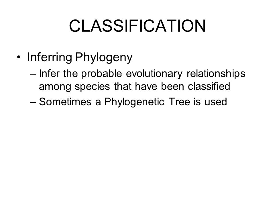 CLASSIFICATION Inferring Phylogeny