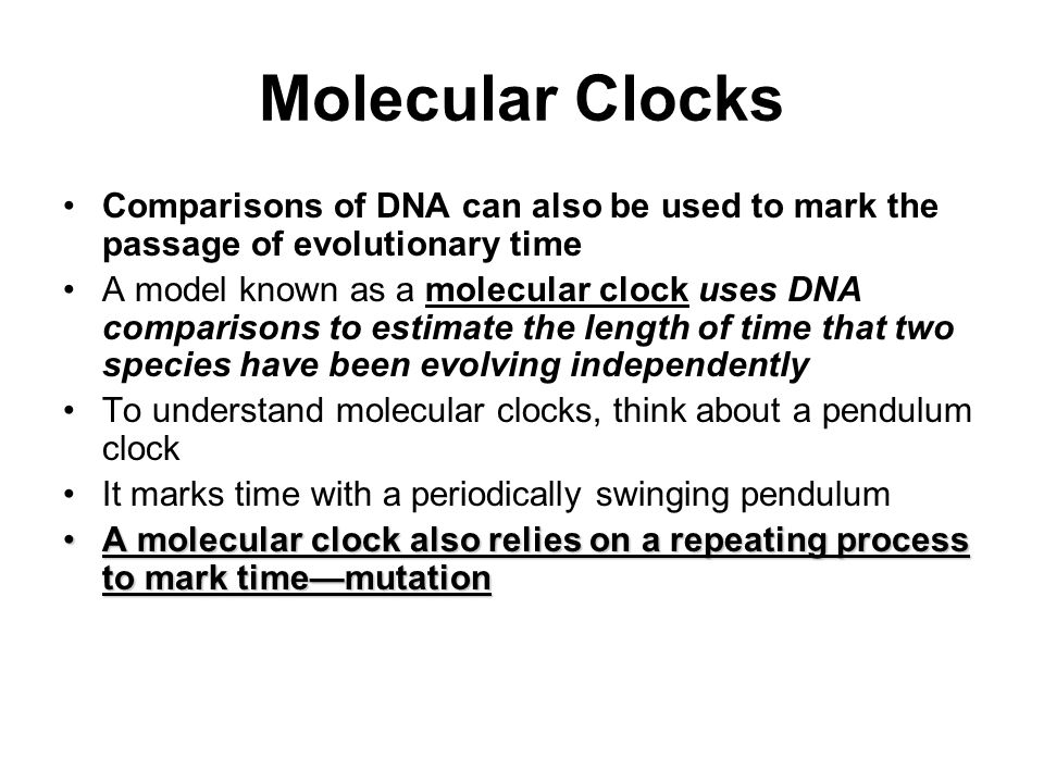 Molecular Clocks Comparisons of DNA can also be used to mark the passage of evolutionary time.