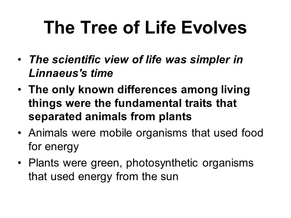 The Tree of Life Evolves
