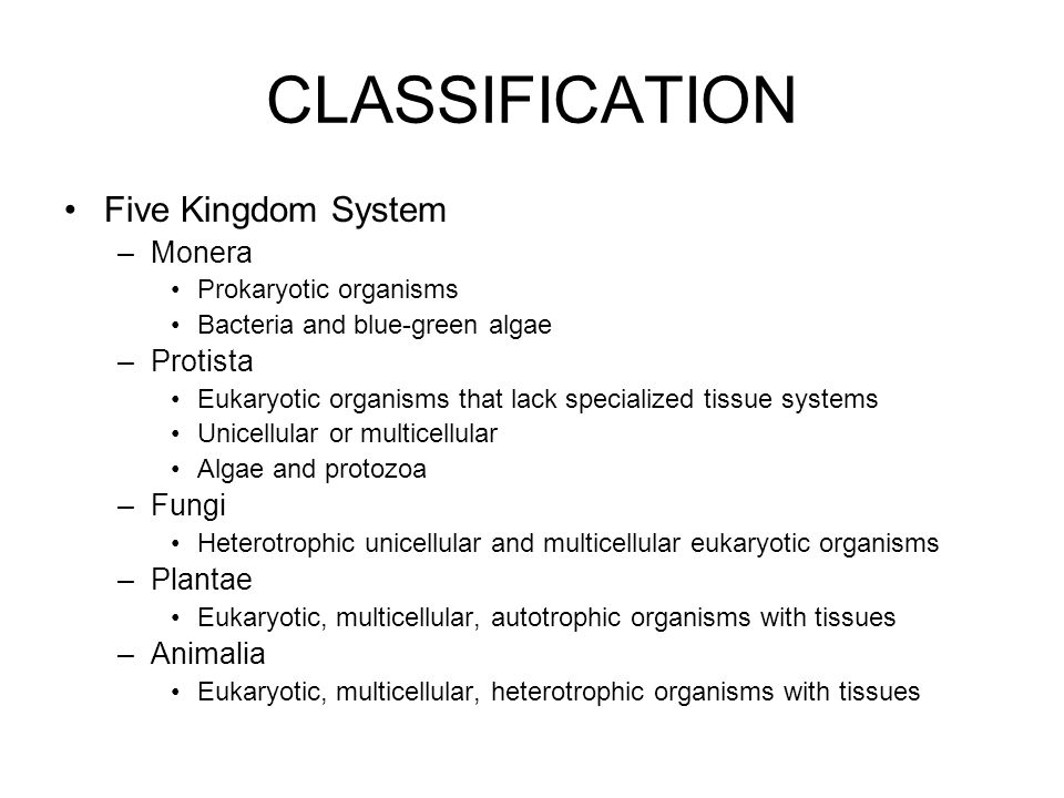 CLASSIFICATION Five Kingdom System Monera Protista Fungi Plantae