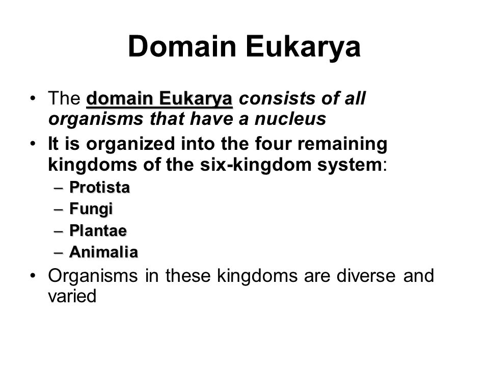 Domain Eukarya The domain Eukarya consists of all organisms that have a nucleus.