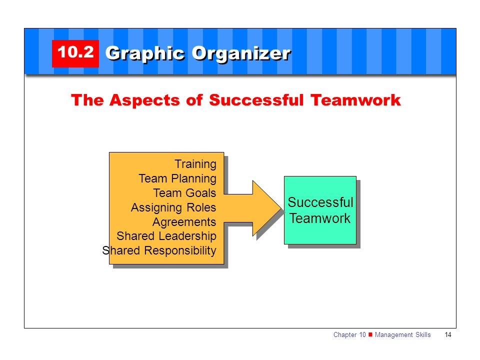 Graphic Organizer 10.2 The Aspects of Successful Teamwork Successful