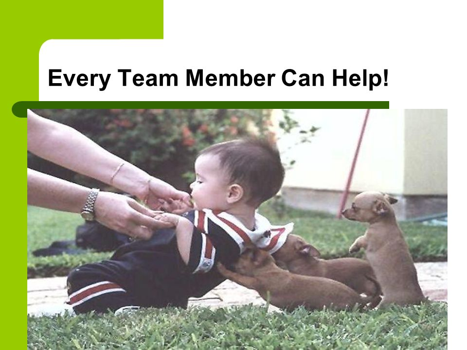 Every Team Member Can Help!