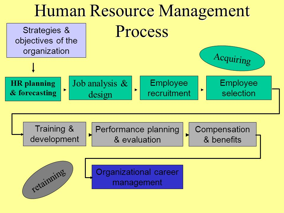 Human resource management performance management