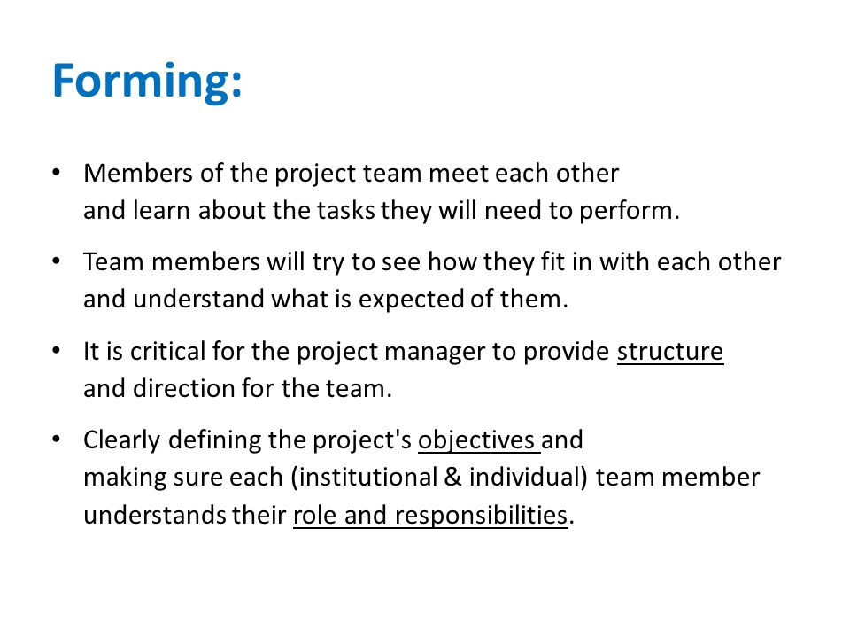 Forming: Members of the project team meet each other and learn about the tasks they will need to perform.