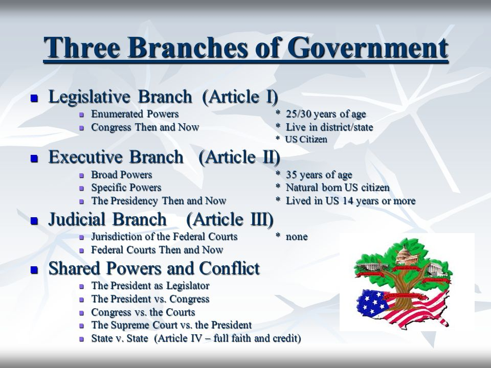 three branches us government essay Governmental power and functions in the united states rest in three branches of government: the legislative, judicial, and executive in this system of a separation of powers each branch operates independently of the others.