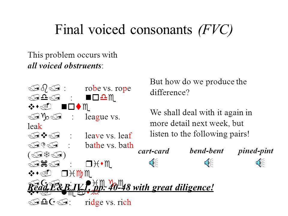 Final voiced consonants (FVC)