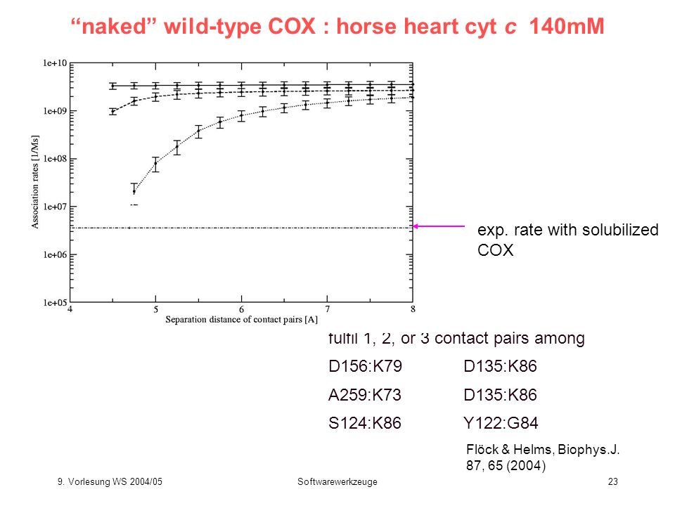 naked wild-type COX : horse heart cyt c 140mM