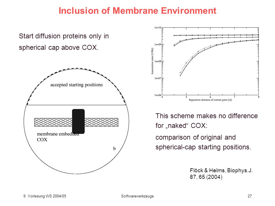 Inclusion of Membrane Environment