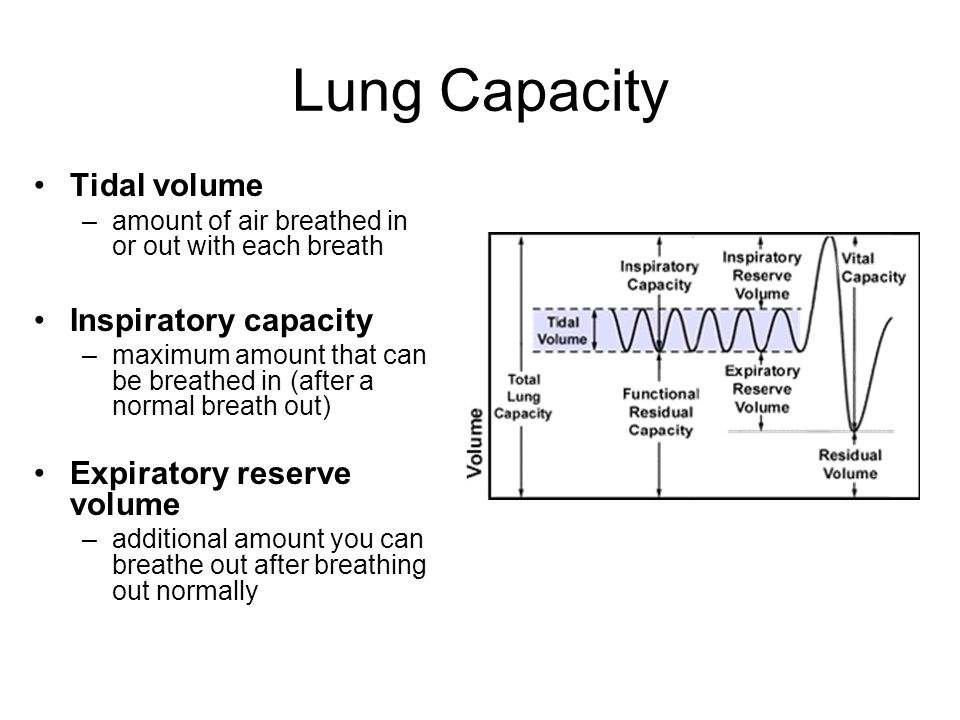 lung capacity Definition of total lung capacity in the legal dictionary - by free online english dictionary and encyclopedia what is total lung capacity.