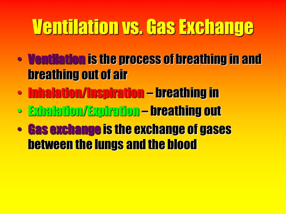 breathing and exchange of gases Exchange of gases by animal respiratory organs in small organisms (eg amoeba, paramecium) the exchange of gases occurs through the general surface of the body or the cell membrane.