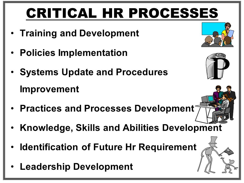 CRITICAL HR PROCESSES Training and Development Policies Implementation
