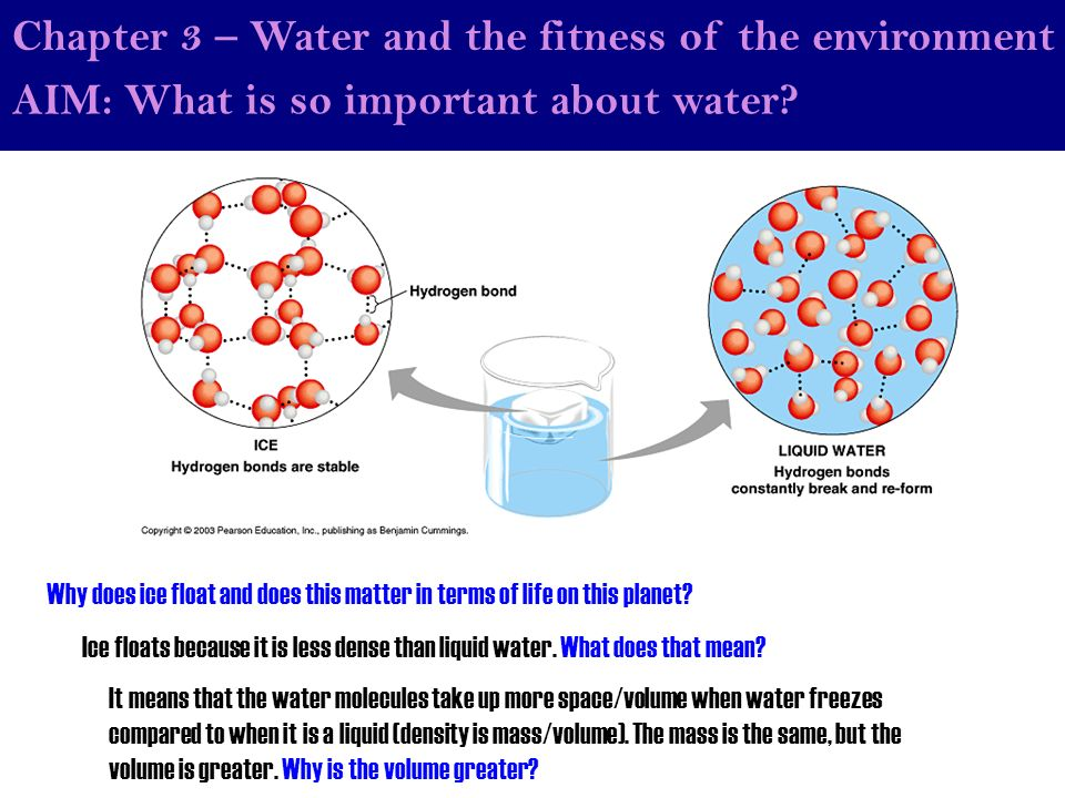 why will be water h2o essential pertaining to life