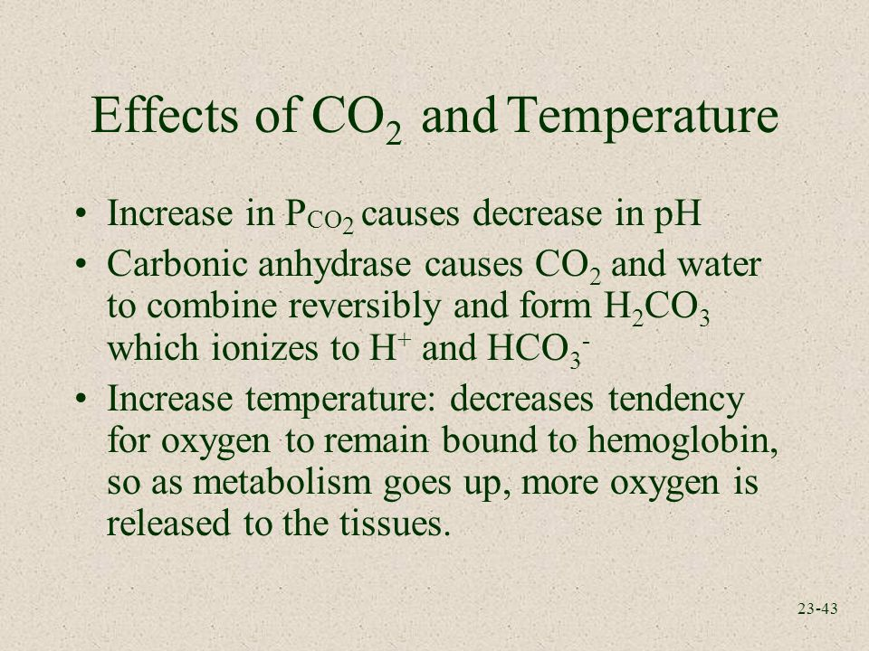 the causes and effects of co2 Acidosis - learn about the causes, symptoms, diagnosis & treatment from the merck manuals - medical consumer version.