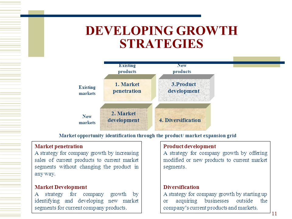 DEVELOPING GROWTH STRATEGIES