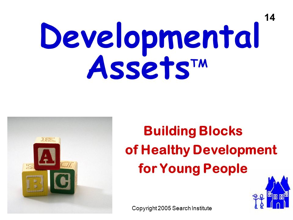 Developmental AssetsTM