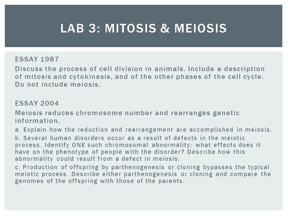 Meiosis and mitosis essay example