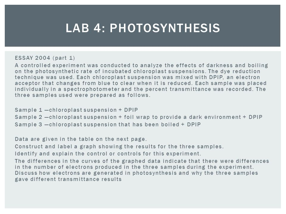 plant photosynthesis lab essay Biology lab 8: photosynthesis biology lab 8:  with respect to photosynthesis, a plant consumes  just send your request for getting no plagiarism essay https:.