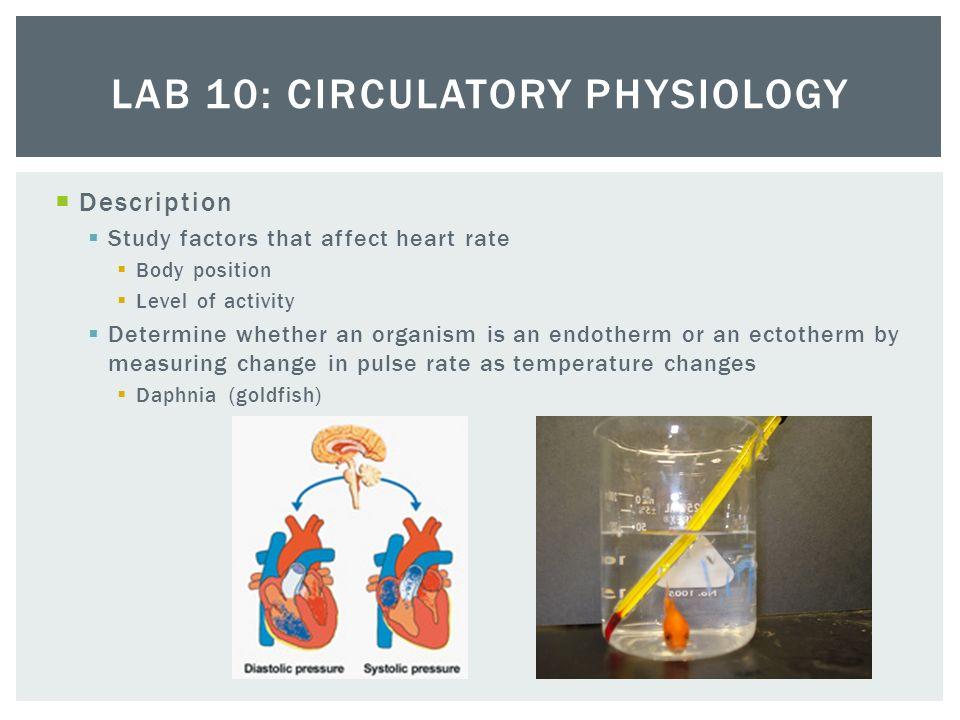 ap biology essay plant hormones