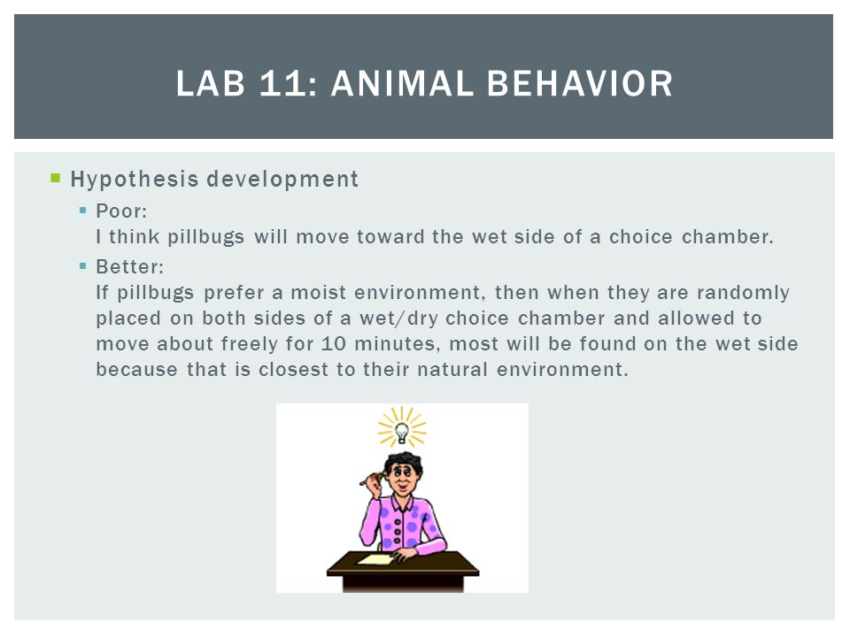 "ap biology lab 11 animal behavior Animal behavior laboratory  revised from ""lab 11: animal behavior"" in college board's ap biology lab manual for students."