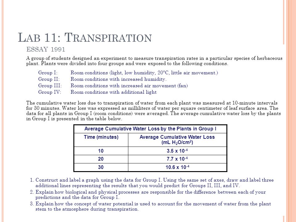 ap bio transpiration lab essay 2012 ap bio lab manual investigation 11 transpiration look at 2001 lab manual, lab 9 learn with flashcards, games, and more — for free.